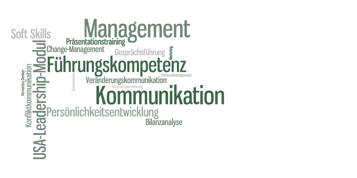 Studieninhalte des DAPR-Masterstudiums Kommunikation und Management
