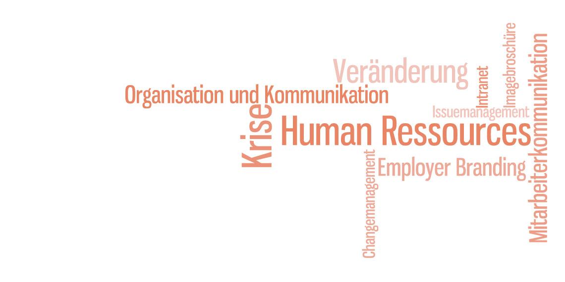 Studieninhalte des DAPR-Masterstudiums Interne und Change-Kommunikation